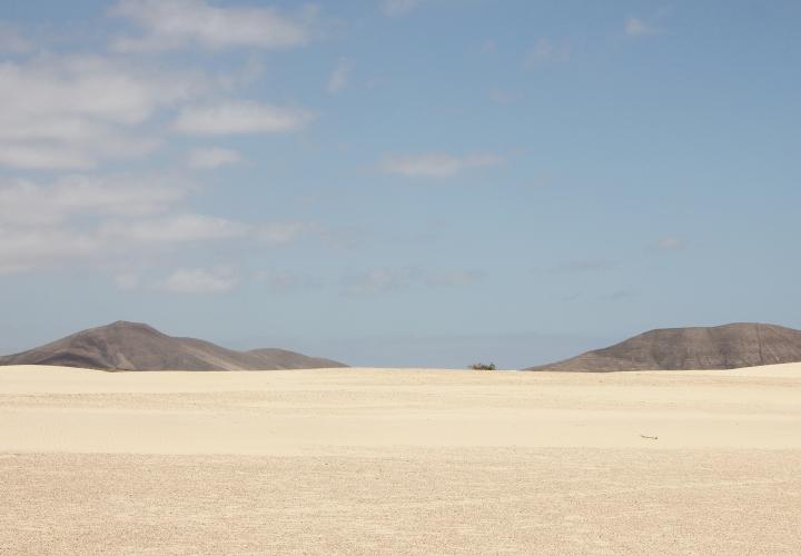 DESERT ROAD 12