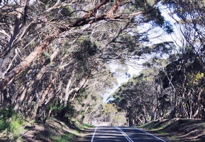 la-souris-coquette-blog-mode-voyages-australie-kangaroo-island-31