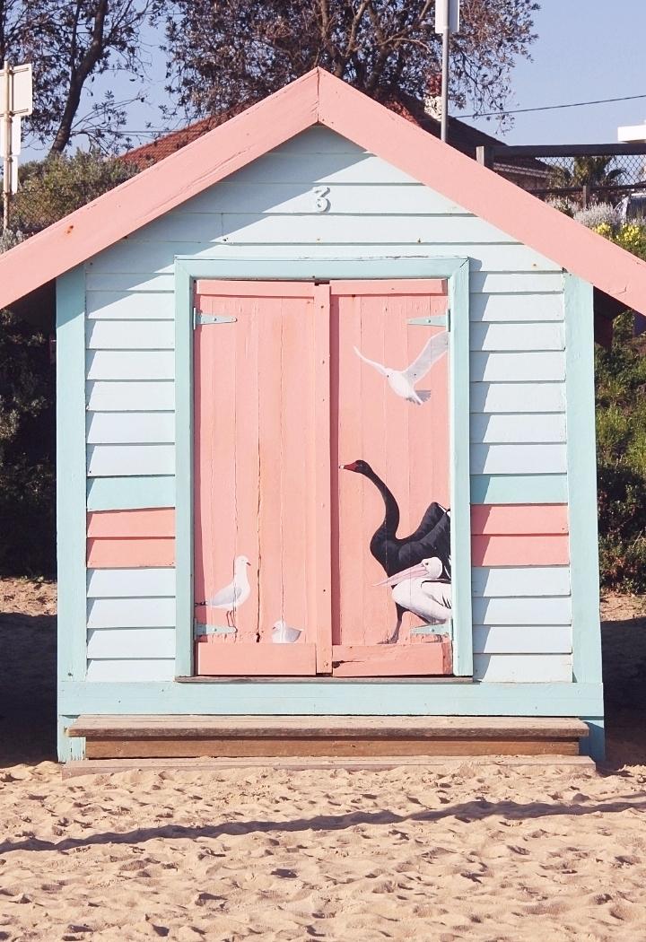 la souris coquette brighton beach 14