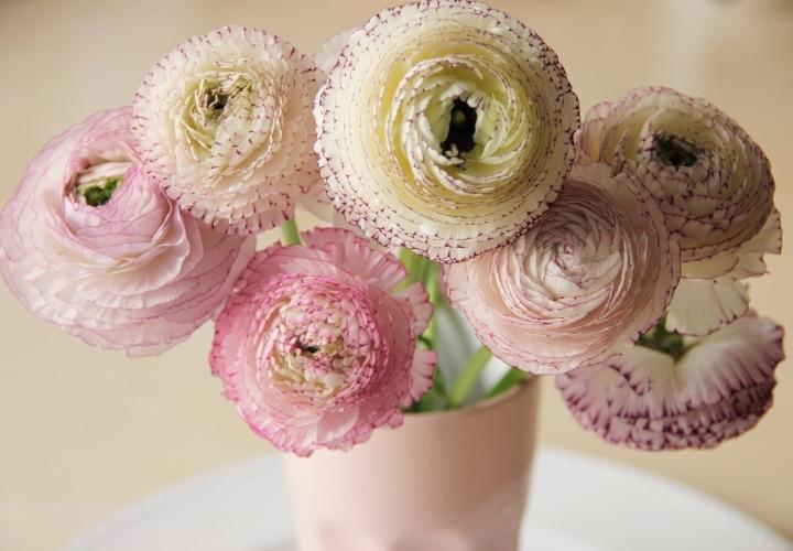 la-souris-coquette-blog-mode-décoration-fleurs-renoncules-2