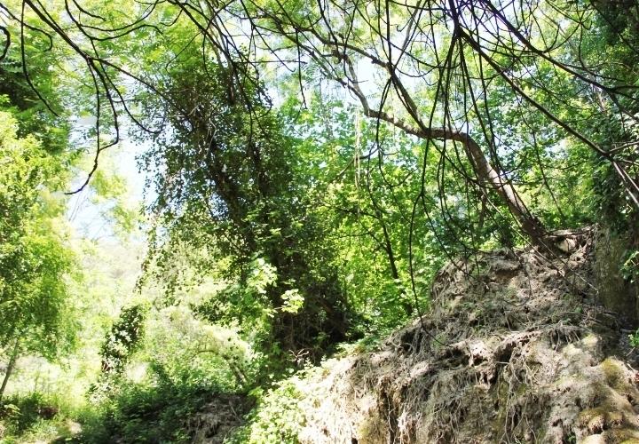 la-souris-coquette-blog-mode-voyage-séjour-croatie-cascades-waterfalls-parc-krka-national-park-9