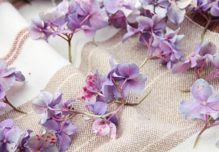 La Souris Coquette Blog Mode Diy Couronne De Fleurs Hortensia 10