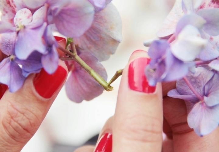 la-souris-coquette-blog-mode-DIY-couronne-de-fleurs-hortensia-5