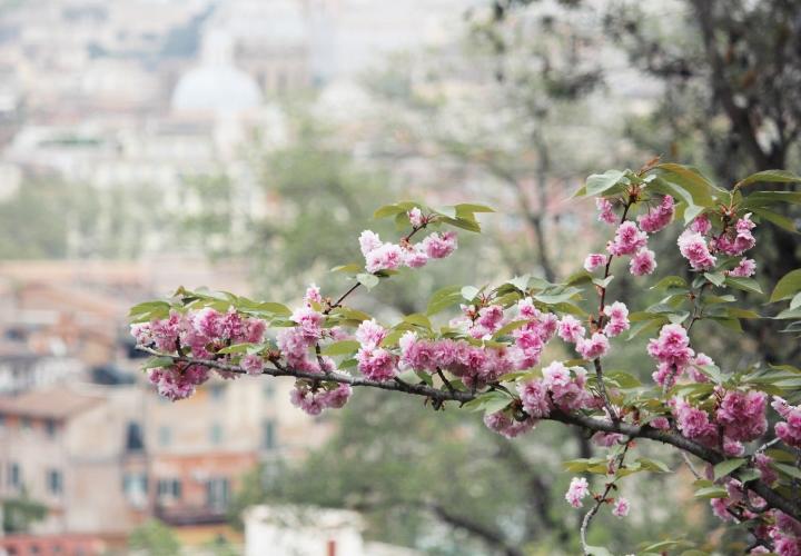 la-souris-coquette-blog-mode-voyages-rome-séjour-city-guide-14