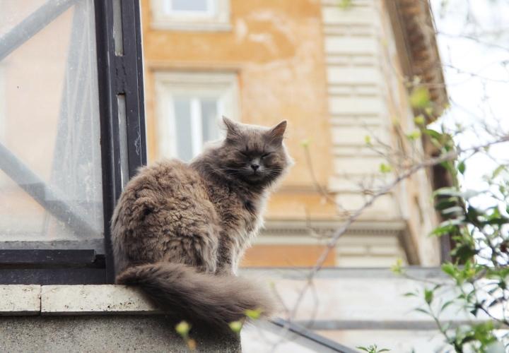 la-souris-coquette-blog-mode-voyages-rome-séjour-city-guide-30