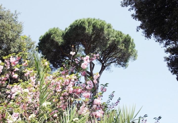la-souris-coquette-blog-mode-voyages-rome-séjour-city-guide-33