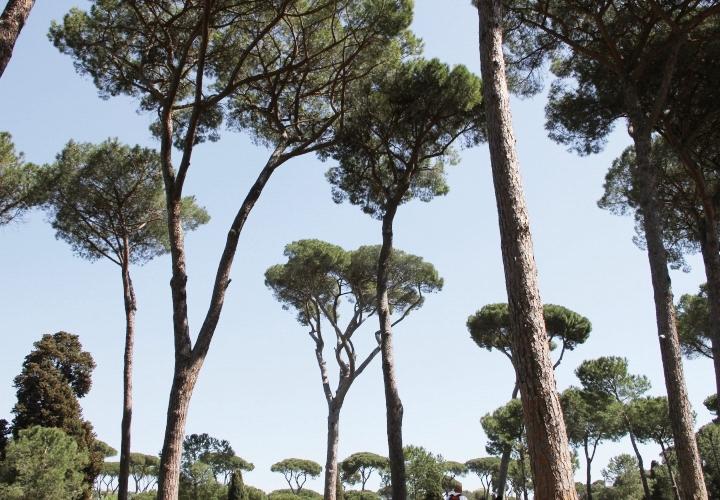 la-souris-coquette-blog-mode-voyages-rome-séjour-city-guide-38