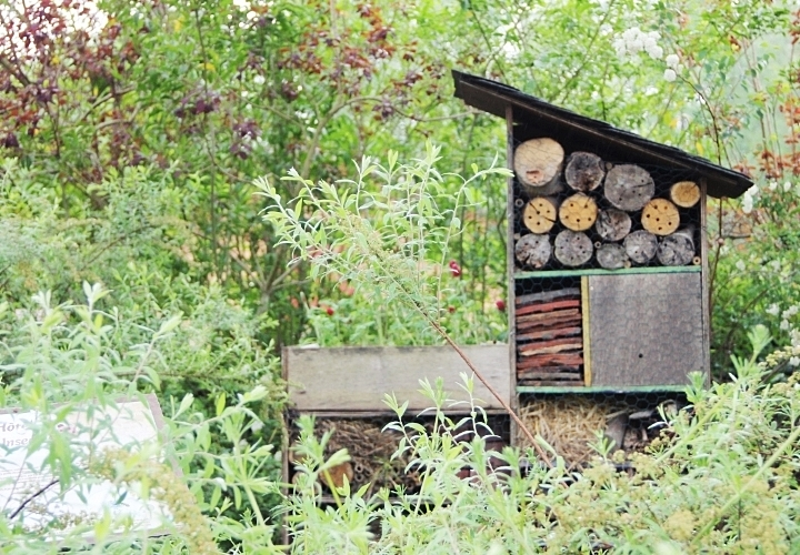 la-souris-coquette-blog-mode-disney-disneyland-environnement-16