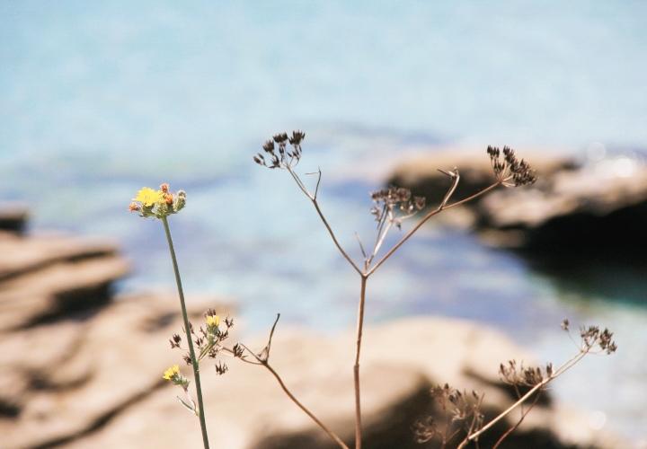 blog-carnet-voyage-bretagne-groix-etel-quiberon-16-2