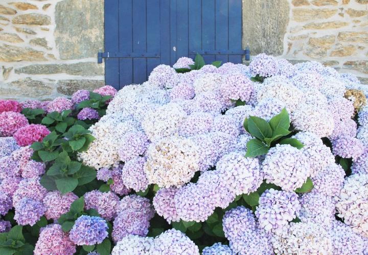 blog-carnet-voyage-bretagne-groix-etel-quiberon-20-2