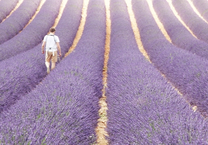 blog-voyage-mode-sud-gorges-verdon-champs-lavandes-plateau-valensole-10