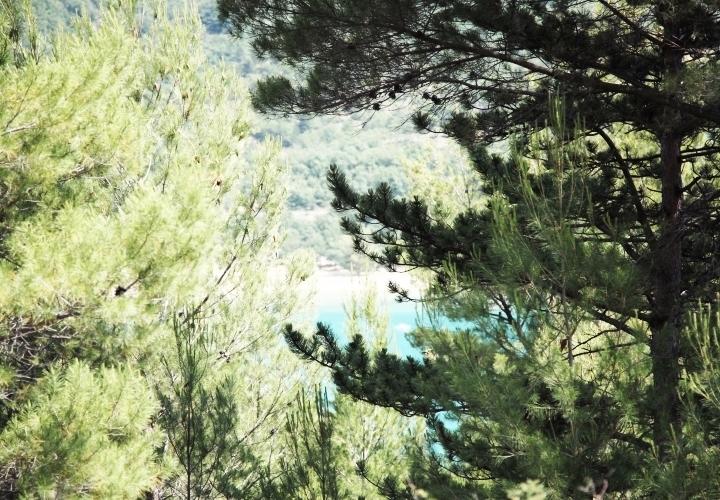 blog-voyage-mode-sud-gorges-verdon-champs-lavandes-plateau-valensole-24
