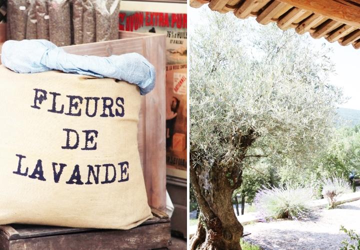 blog-voyage-mode-sud-gorges-verdon-champs-lavandes-plateau-valensole-34