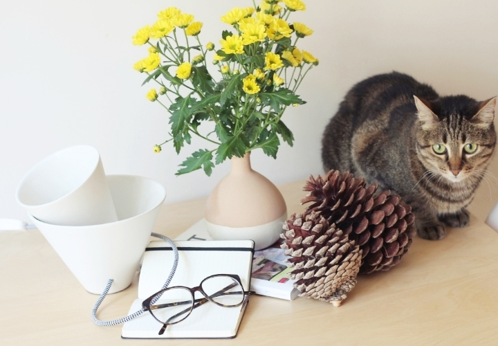 blog-deco-la-souris-coquette-lampcommerce-fabbian-4