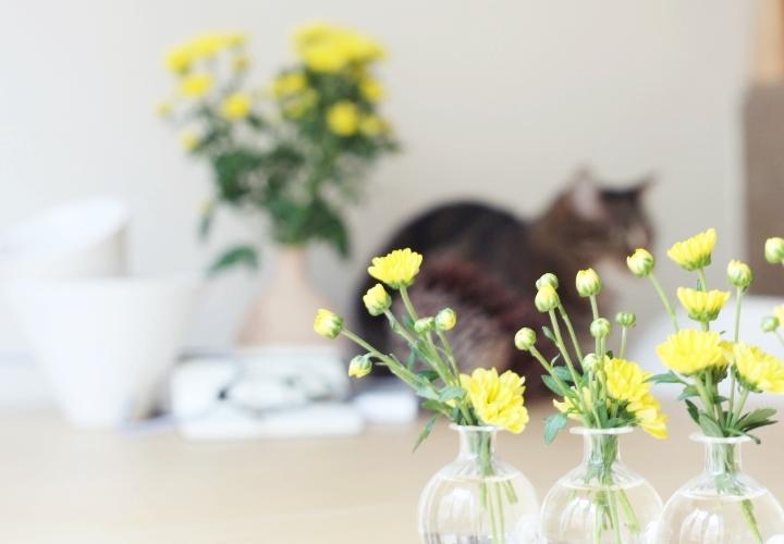 blog-deco-la-souris-coquette-lampcommerce-fabbian-5